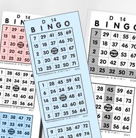 Bingo 1-75